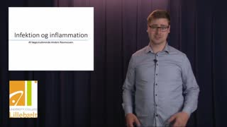 Infektion og inflammation