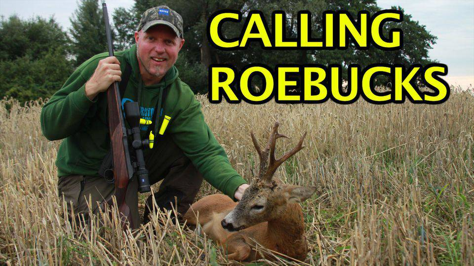 Calling roebucks with Kristoffer Clausen